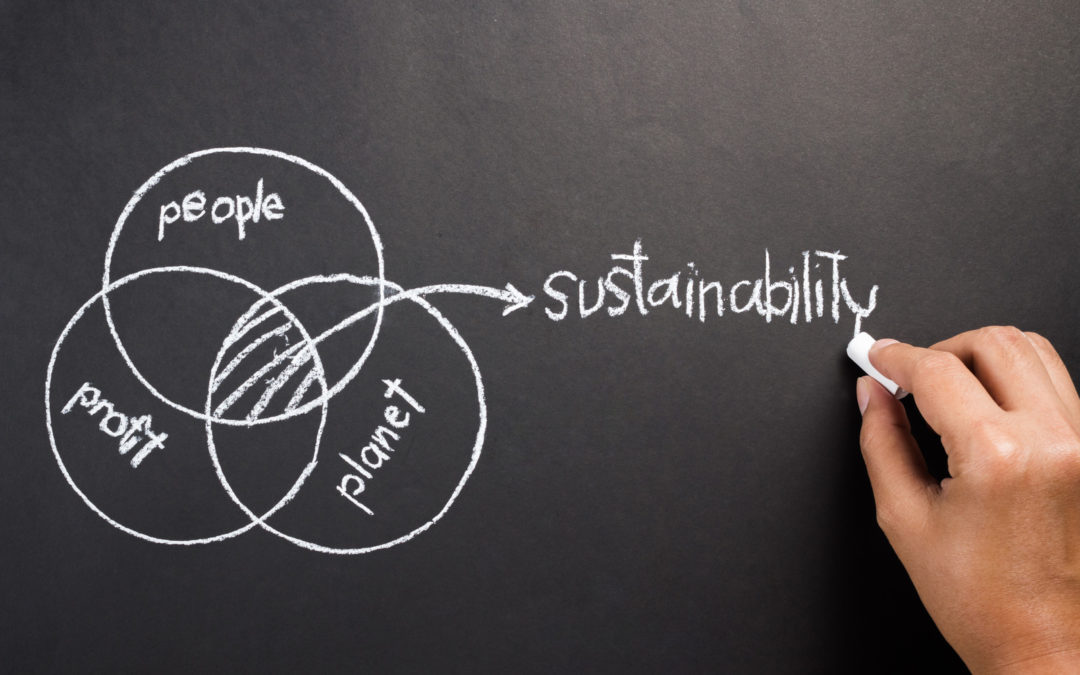 Sustainability in Executive Compensation